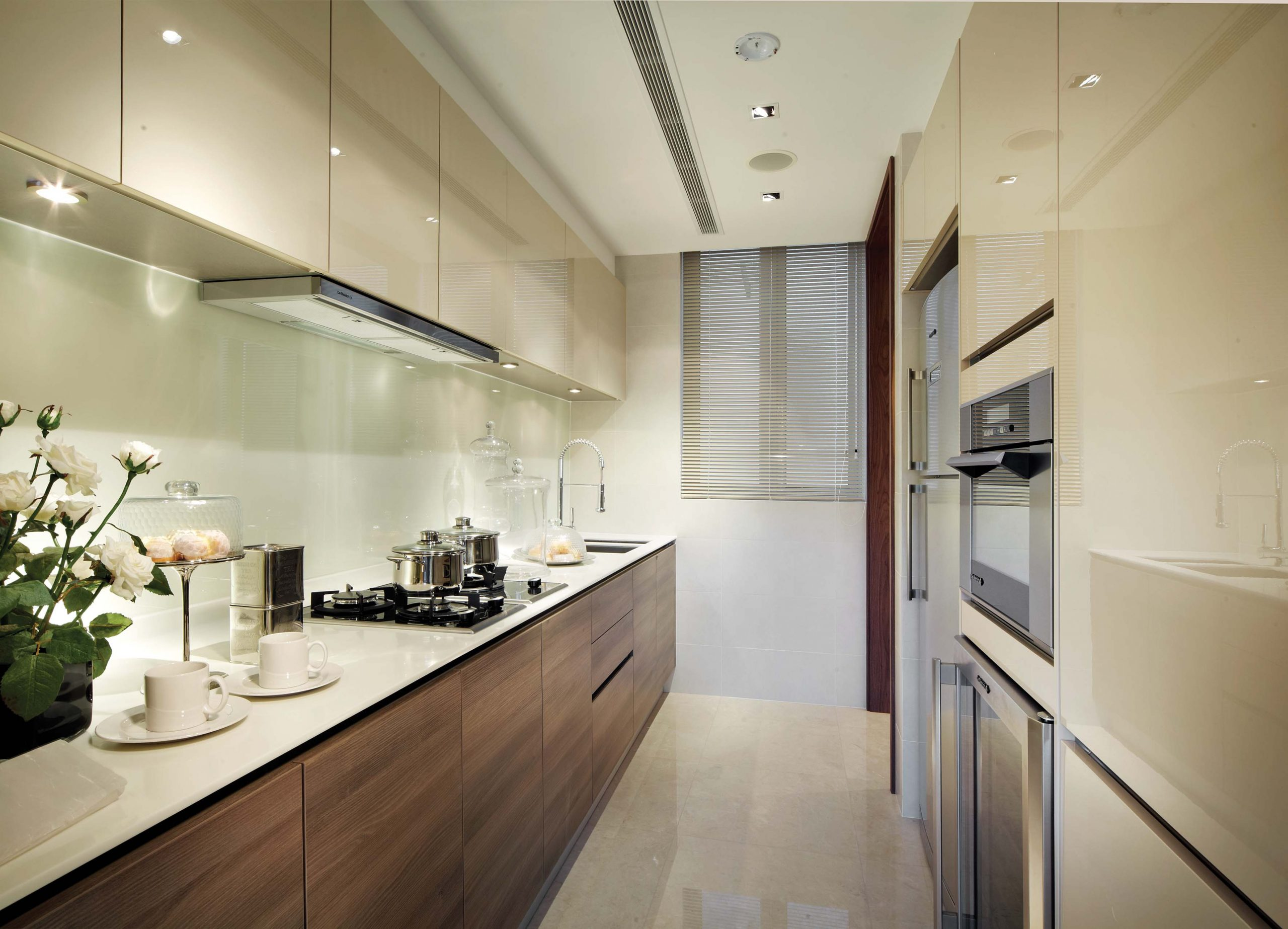 Penrose-Condo-kitchen-meyerise-singapore